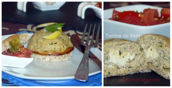 Picnik-collageterrine-de-thon.jpg